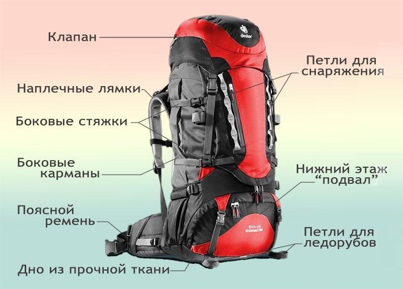 Рюкзаки современные схема чемоданы edmins цены